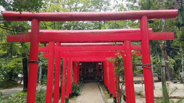 An path through a series of red wooden frames, leading to the entrance of a building in Japan